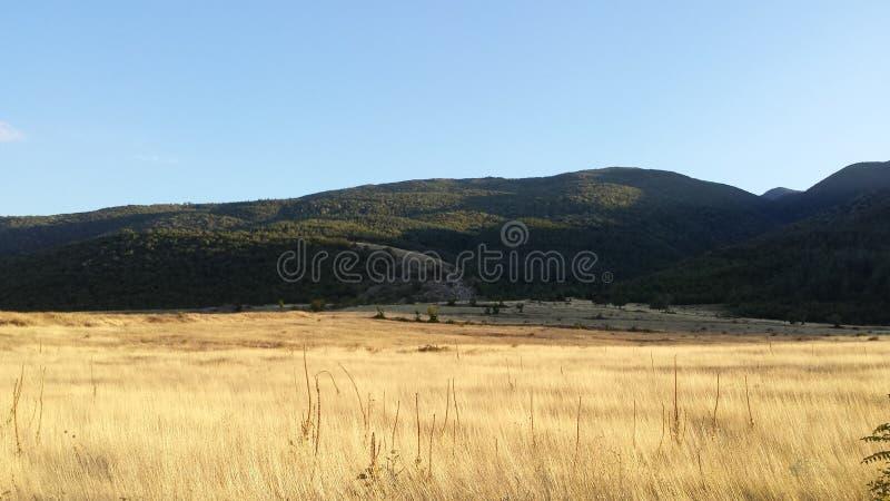 Prati solari, Bulgaria fotografia stock libera da diritti