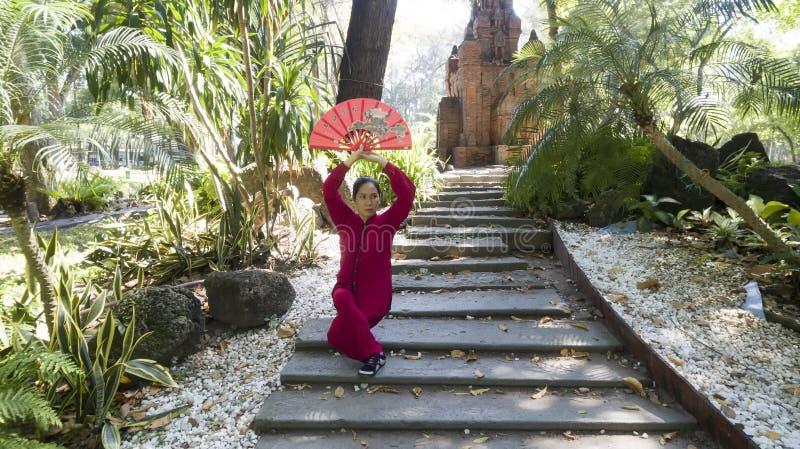 Pratica di Tai Chi fotografia stock