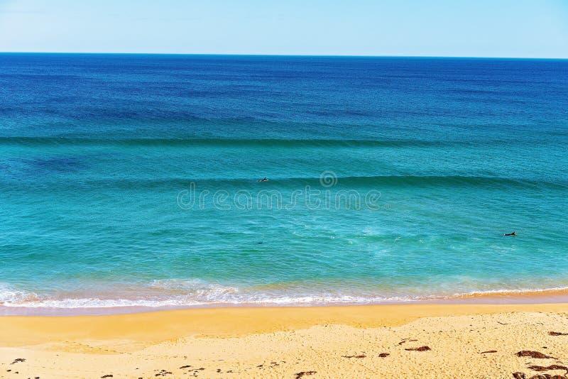 Praticando il surfing alla spiaggia Australia di Logan immagini stock libere da diritti