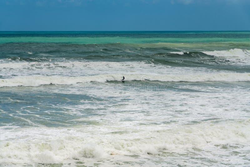 Praticando il surfing in mari in tempesta fotografia stock libera da diritti