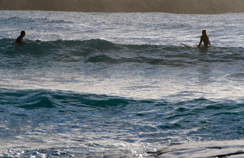 Praticare il surfing della donna e dell'uomo fotografia stock libera da diritti