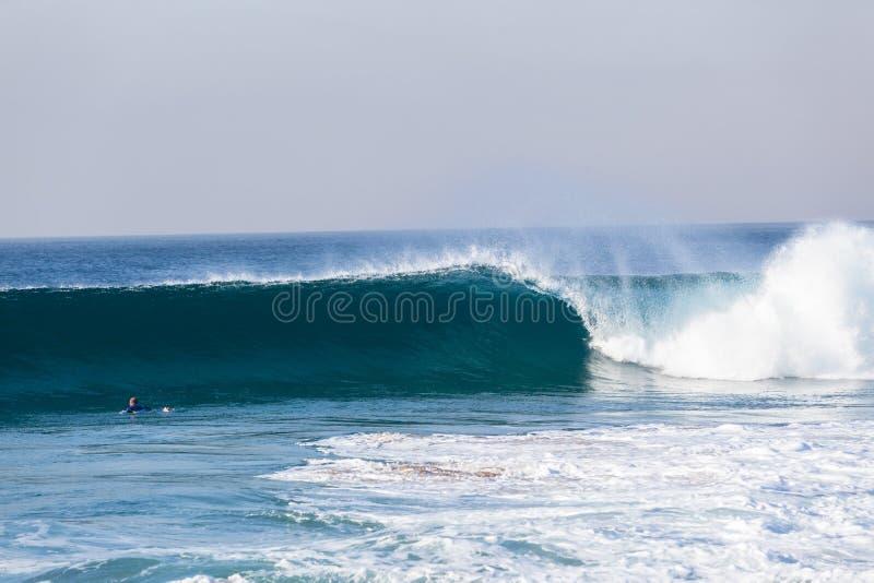 Praticare il surfing di rematura non identificato del surfista blu di Wave fotografia stock