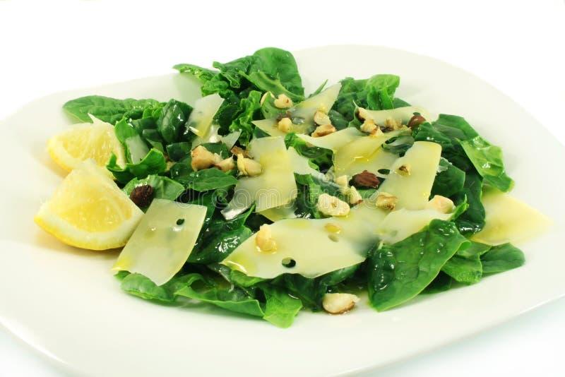 Prato com um espinafre da salada fotos de stock