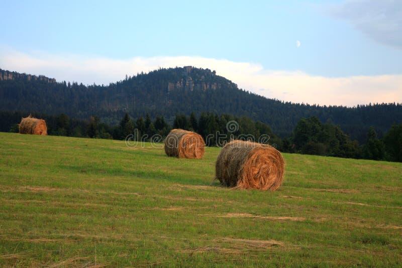 Prato con fieno e le montagne di Stolowe in Polonia fotografia stock libera da diritti