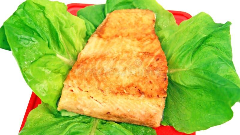 Download Prato de peixes foto de stock. Imagem de saudável, refeição - 29825448