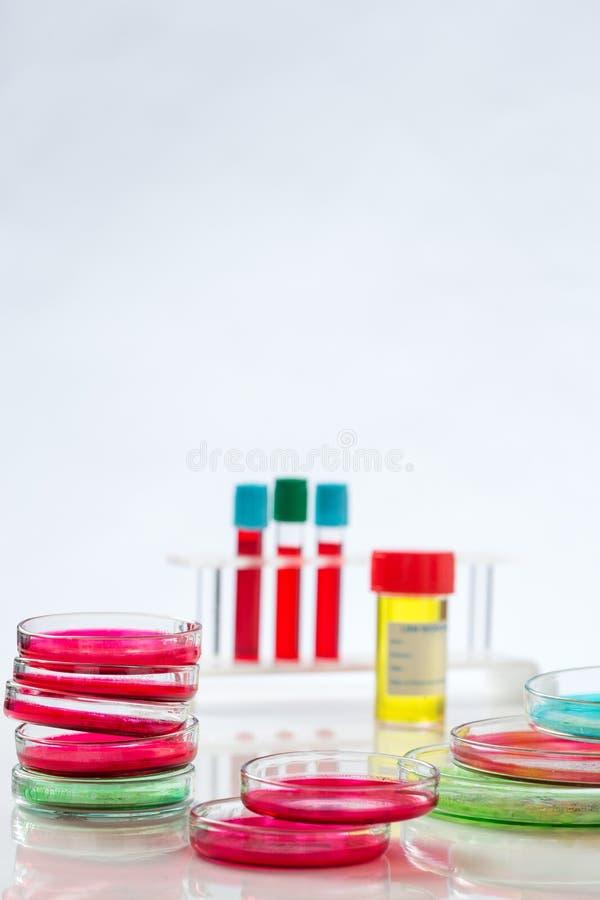 Download Prato De Petri, Análise De Sangue, Tubo De Ensaio, Seringa Imagem de Stock - Imagem de biotechnology, equipamento: 65577171