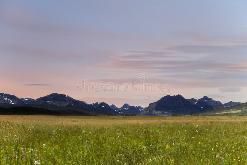 Prato della montagna al tramonto nel parco del ghiacciaio, Montana fotografia stock libera da diritti