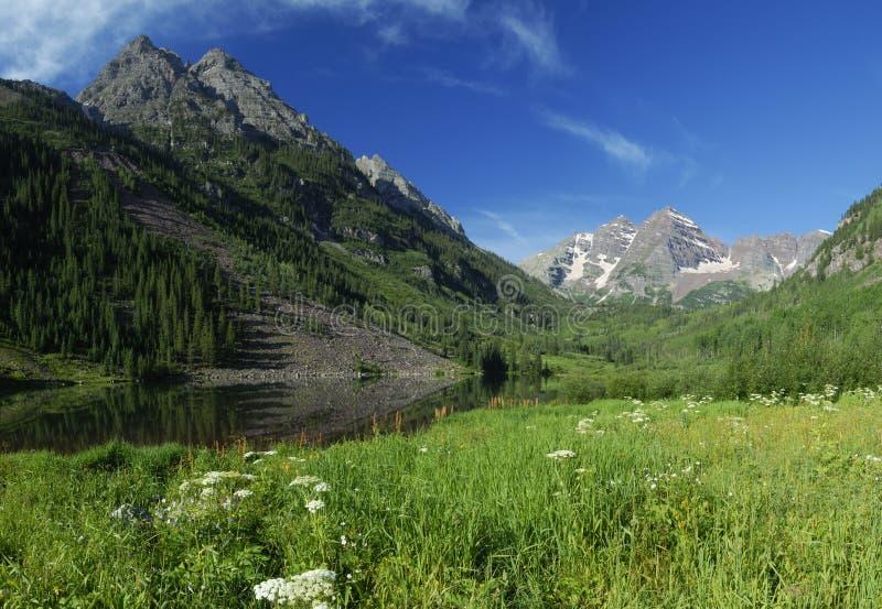 Prato della sorgente vicino a Belhi marrone rossiccio in Colorado immagine stock libera da diritti
