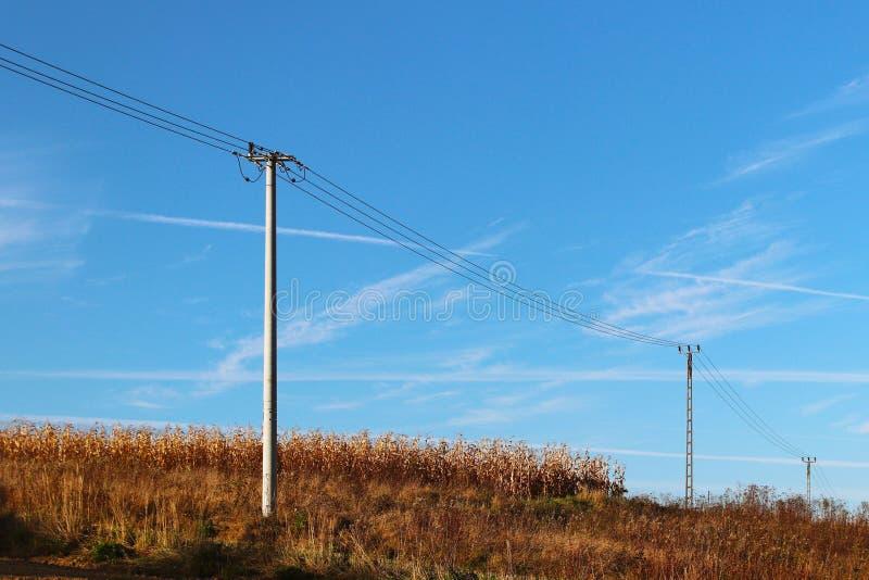 Prato di estate nei raggi del sole con una linea imminente di elettricità e della nuvola temporalesca Cambiamento del tempo Tempe immagine stock libera da diritti