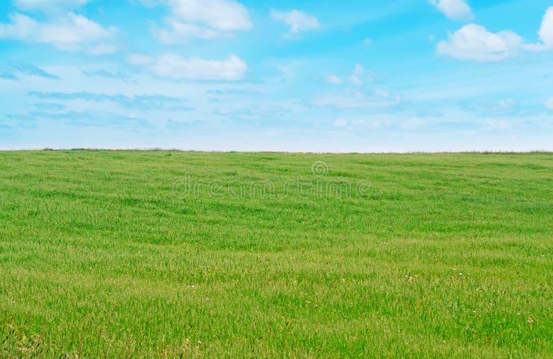 Download Prato e nuvole immagine stock. Immagine di caduta, bellezza - 30825971