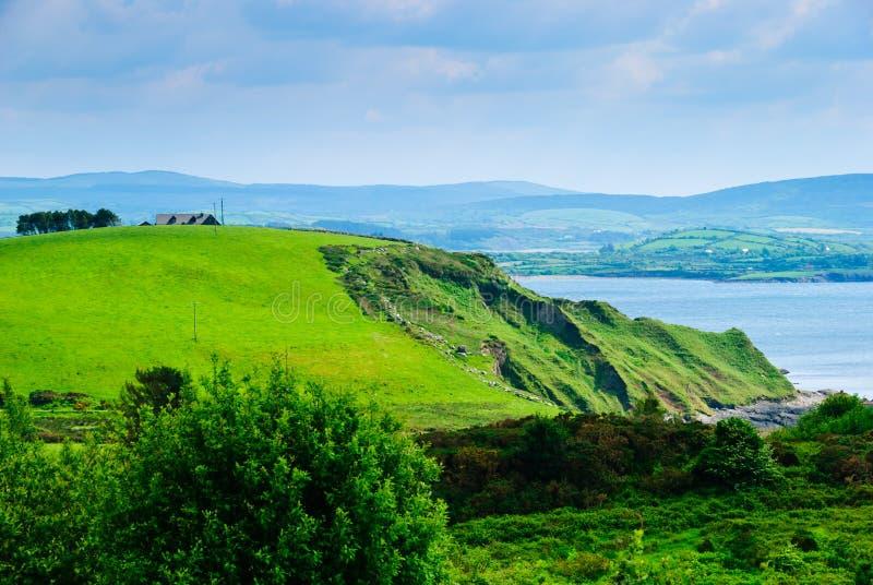 Prato e scogliera dal mare, Irlanda immagini stock libere da diritti