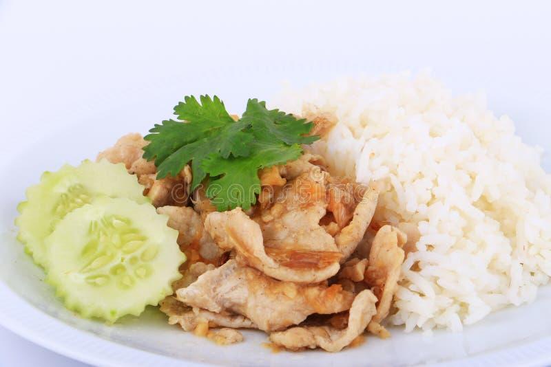 Prato favorito tailandês, carne de porco cortada fritada com alho com arroz e pepino fotografia de stock