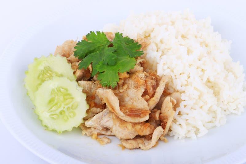 Prato favorito tailandês, carne de porco cortada fritada com alho com arroz e pepino imagens de stock