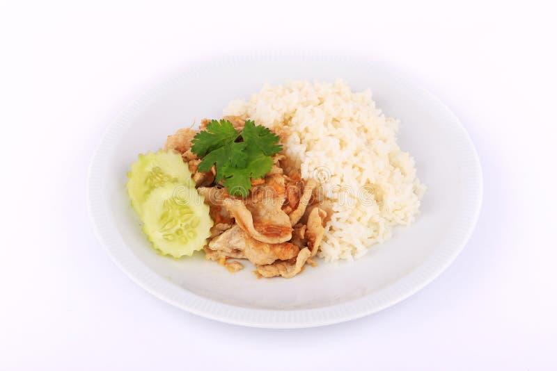 Prato favorito tailandês, carne de porco cortada fritada com alho com arroz e pepino imagens de stock royalty free