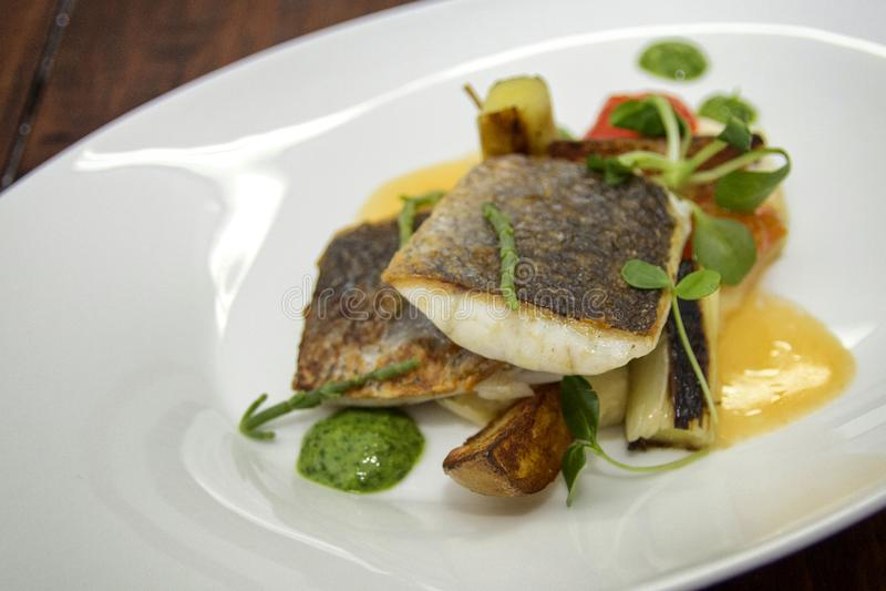 Prato gourmet com faixa de peixes foto de stock royalty free