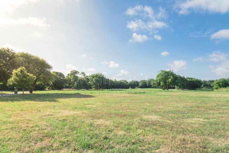 Prato inglese erboso del bello parco urbano verde a Irving, il Texas, U.S.A. immagini stock