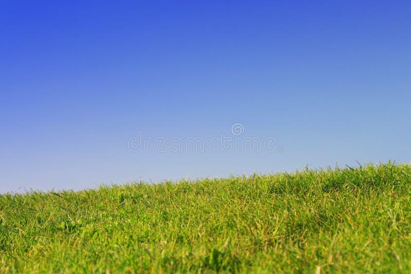 Prato inglese verde con cielo blu fotografie stock