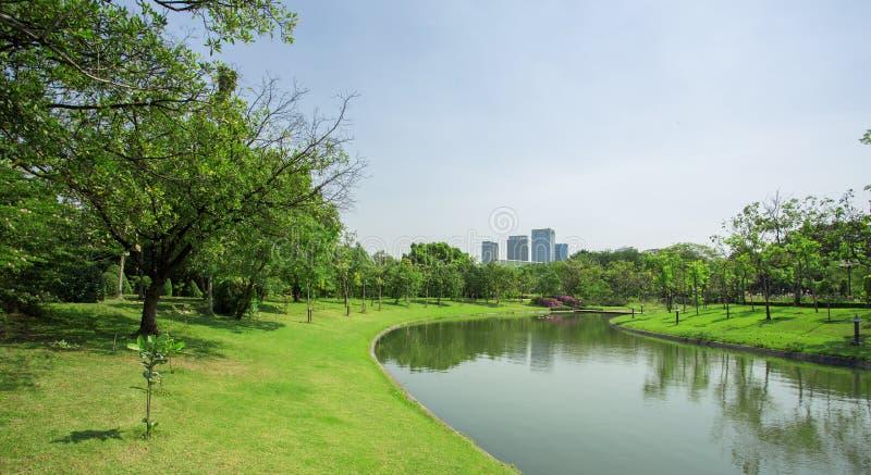 Prato inglese verde di un parco spazioso della città immagine stock