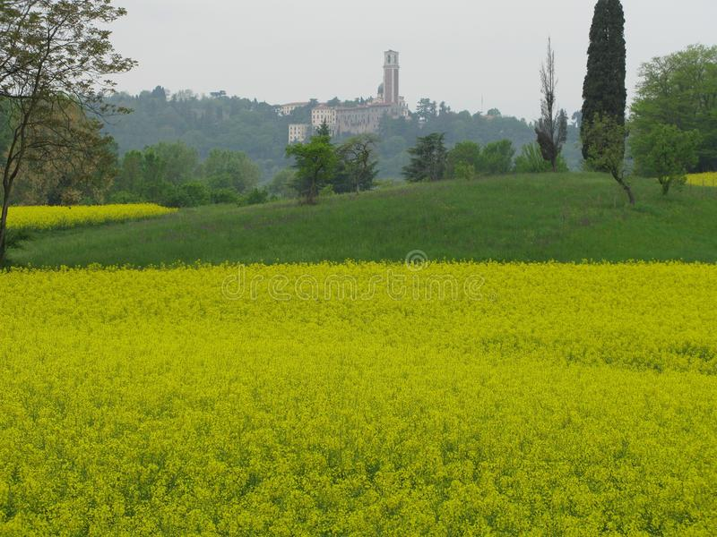 Prato with rapeseed with church and bell tower royalty free stock photo