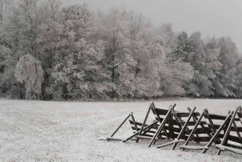 Prato sotto neve immagine stock