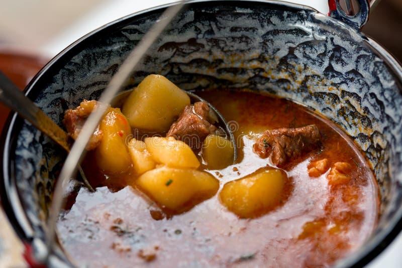 Prato ucraniano tradicional - borsch, fim acima imagem de stock