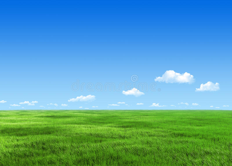 prato verde 7000px illustrazione vettoriale