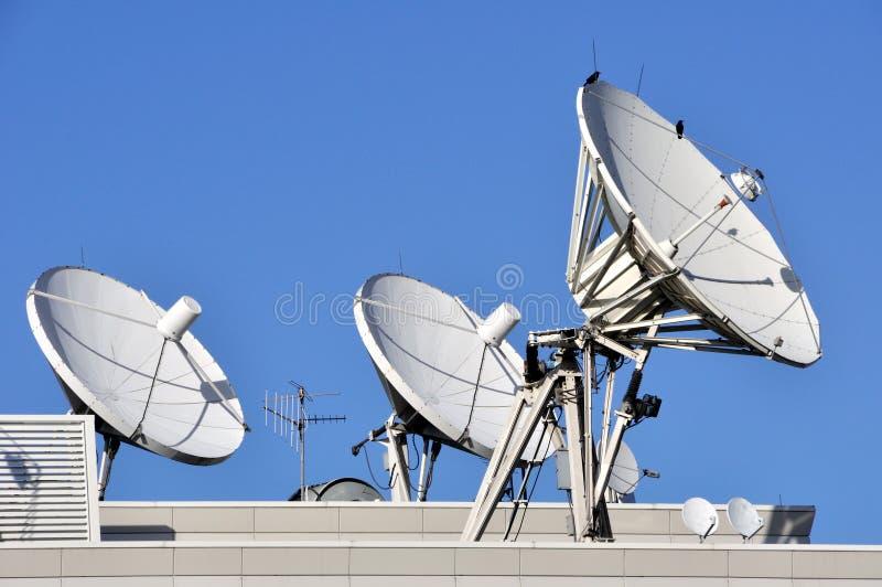 Pratos das comunicações satélites fotografia de stock royalty free