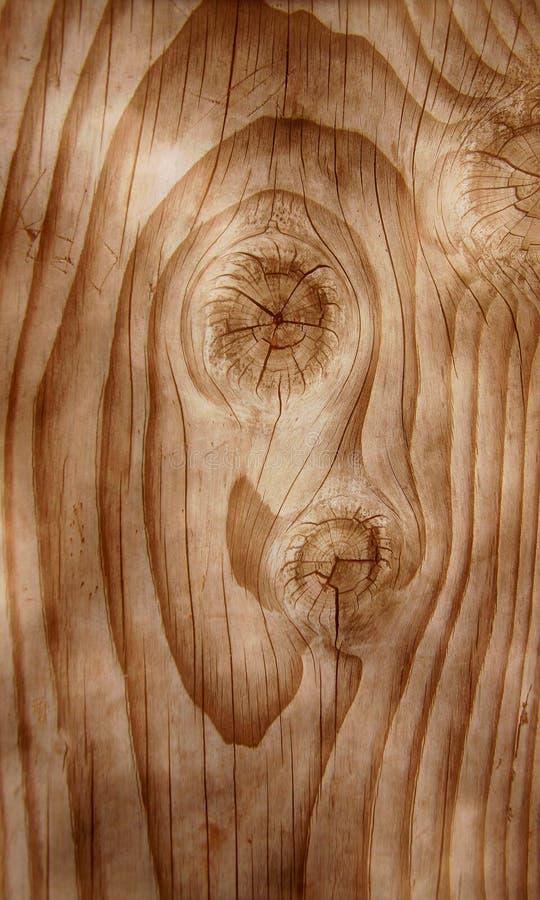 prawdziwego drewna zdjęcie obrazy stock