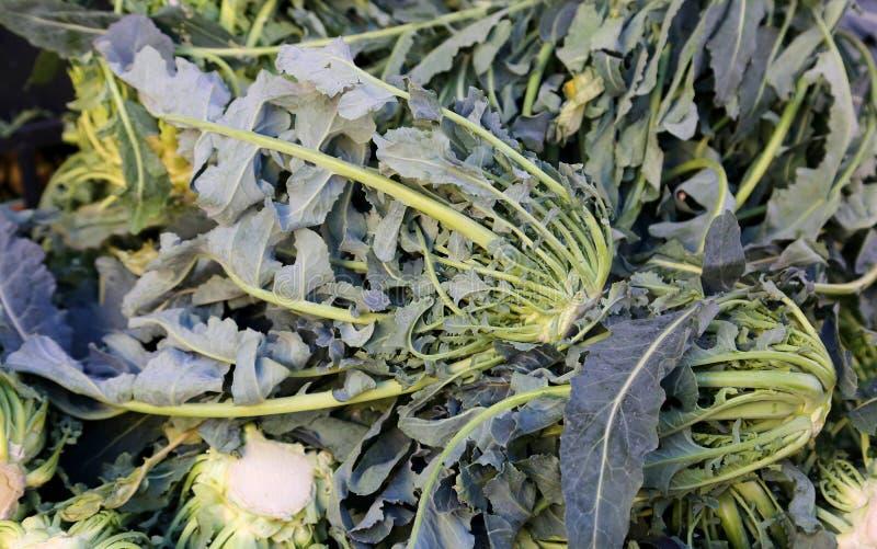 Prawdziwi oryginał zieleni brokuły Północny Włochy dla sprzedaży przy g zdjęcia stock