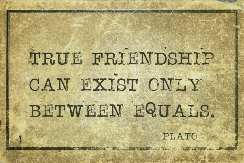 Prawdziwi przyjaciele Plato zdjęcia royalty free