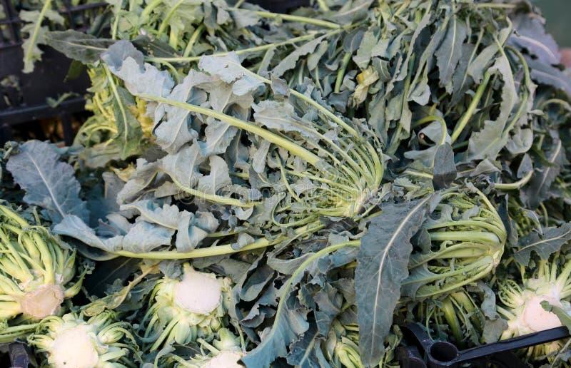 Prawdziwi zieleni brokuły Północny Włochy dzwoniący dla sprzedaży przy gre fotografia stock