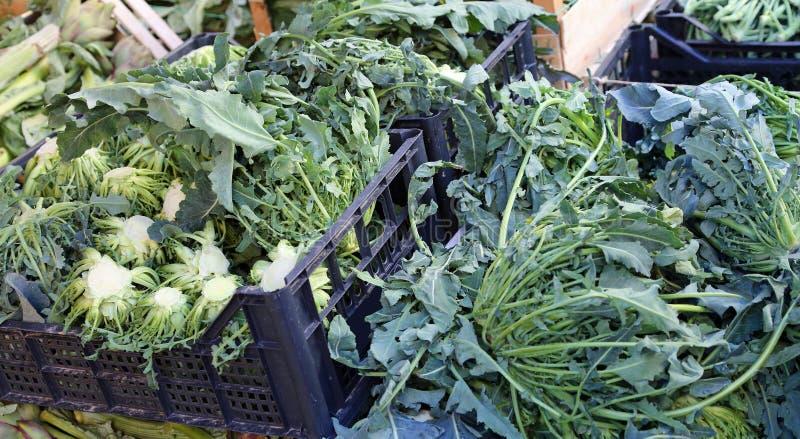 Prawdziwi zieleni brokuły Północny Włochy dzwonili BROCCOLO FIOLARO obrazy royalty free
