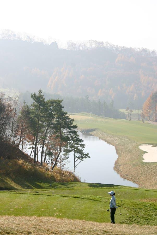 prawdziwy golfiarz Korei obrazy stock