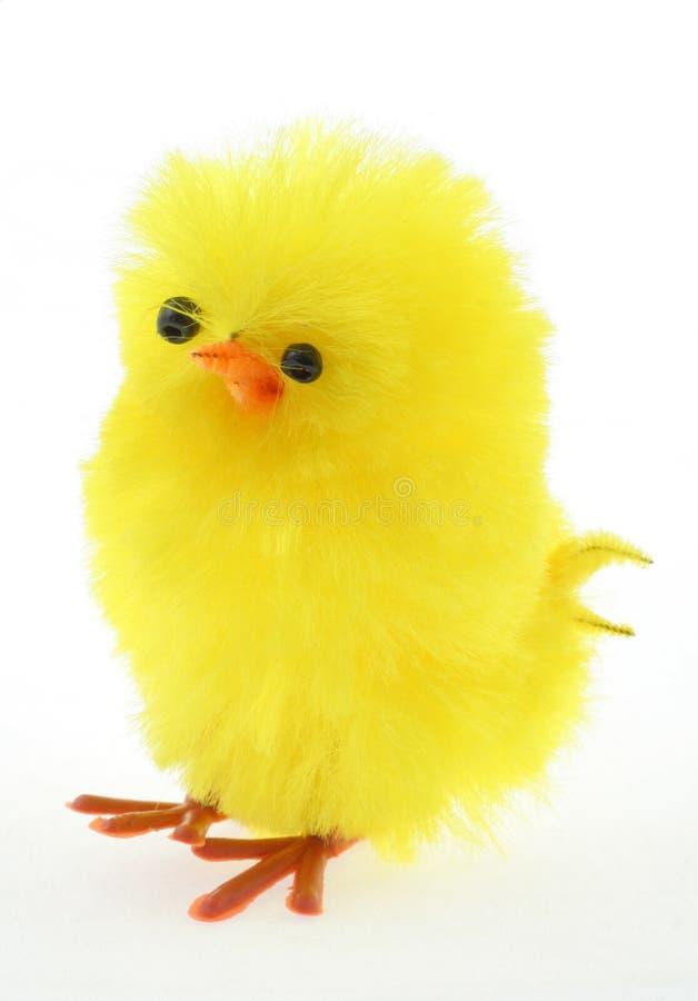 prawdziwy Wielkanoc kurczaka makro zabawka zdjęcie stock