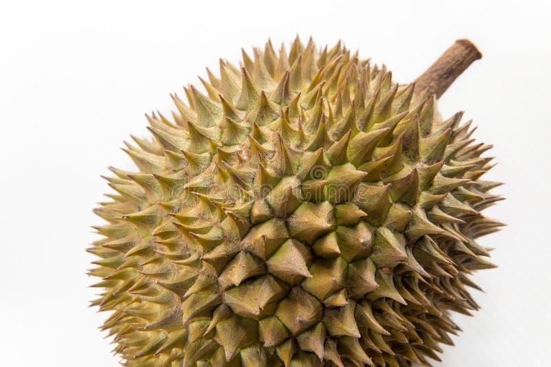Prawie wokoło kształtnego Durian owoc odizolowywająca na białym tle fotografia royalty free