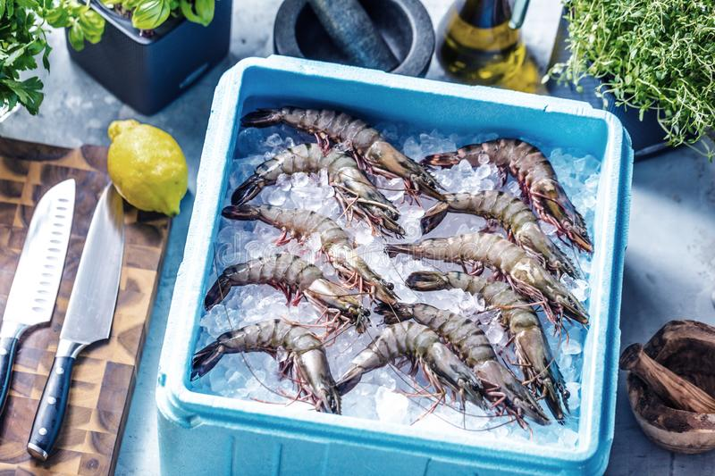 Prawn newly fished and stored in boxes with ice. Prawn newly fished and stored in blue box with ice royalty free stock images