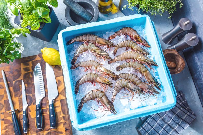 Prawn newly fished and stored in boxes with ice. Prawn newly fished and stored in blue box with ice royalty free stock image
