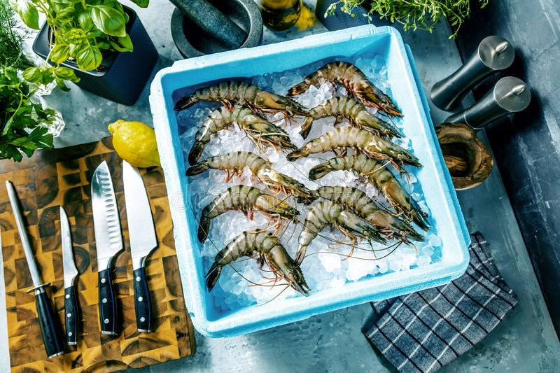 Prawn newly fished and stored in boxes with ice. Prawn newly fished and stored in blue box with ice stock images