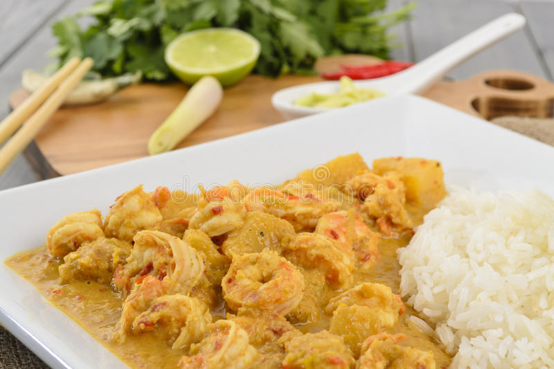 Download Prawn & Pineapple Curry Stock Image - Image: 23958021