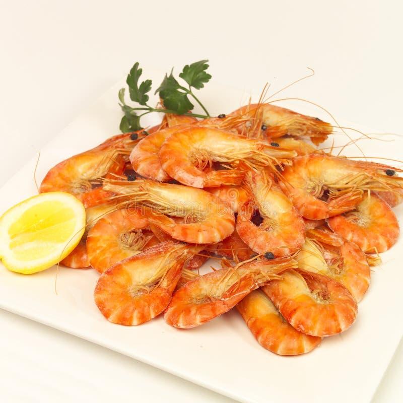 Download Prawn platter stock photo. Image of prawns, shellfish - 25132284