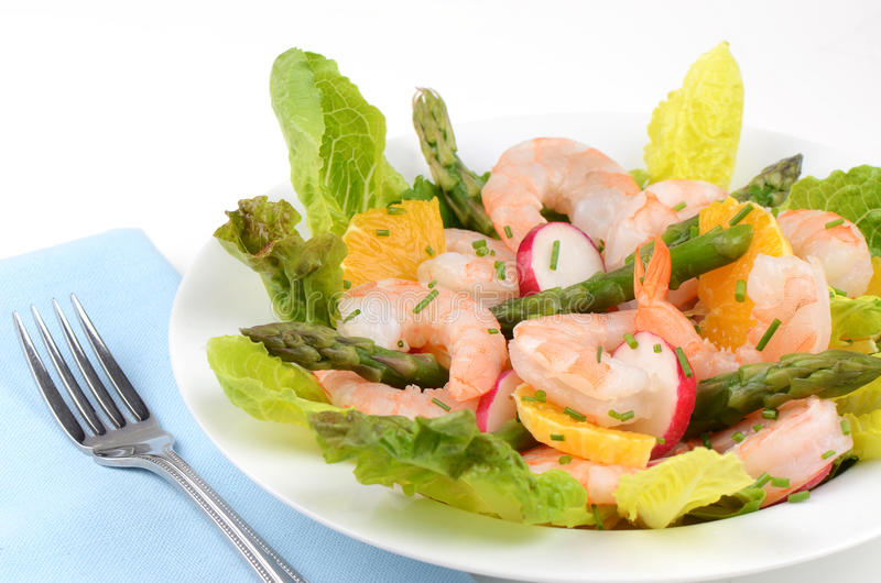 Download Prawn salad stock image. Image of nutritious, cold, asparagus - 29962525