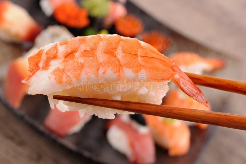 Prawn sushi stock image