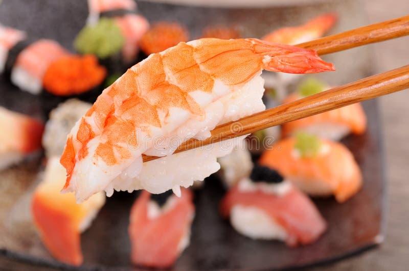Prawn sushi held by chopsticks royalty free stock photo