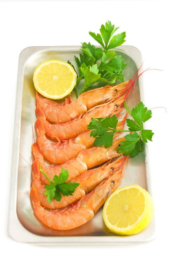 Download Prawns stock image. Image of health, colorful, food, metal - 16406217