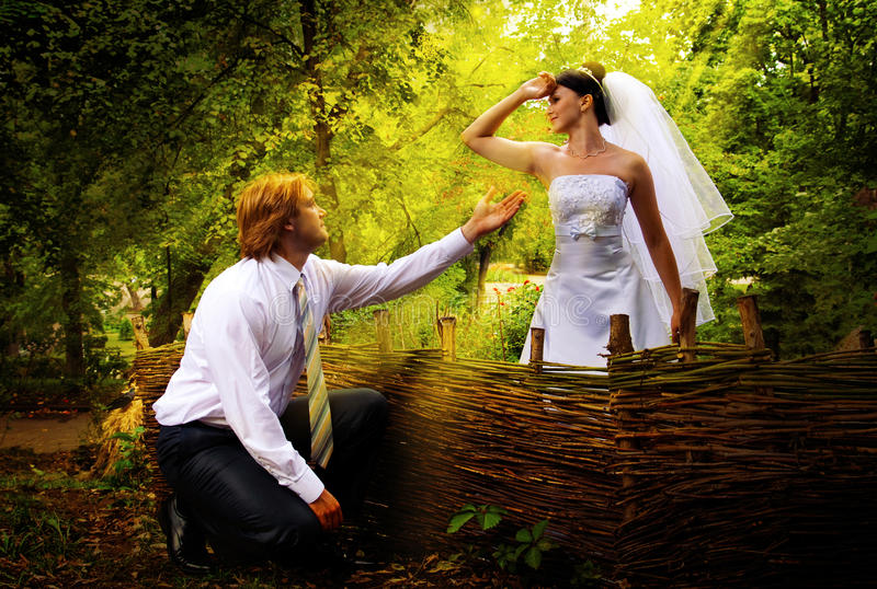Download Pray hand and heart stock photo. Image of bunch, flirting - 11273952