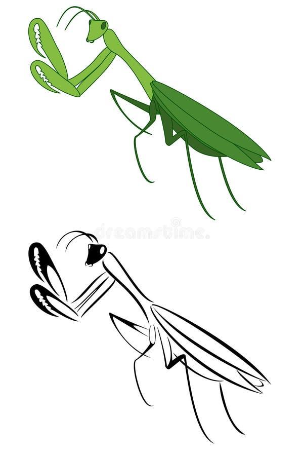 Pray Mantis Stock Image