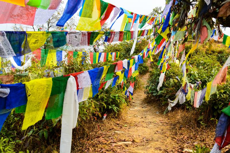 Prayer flags in the wind stock photo