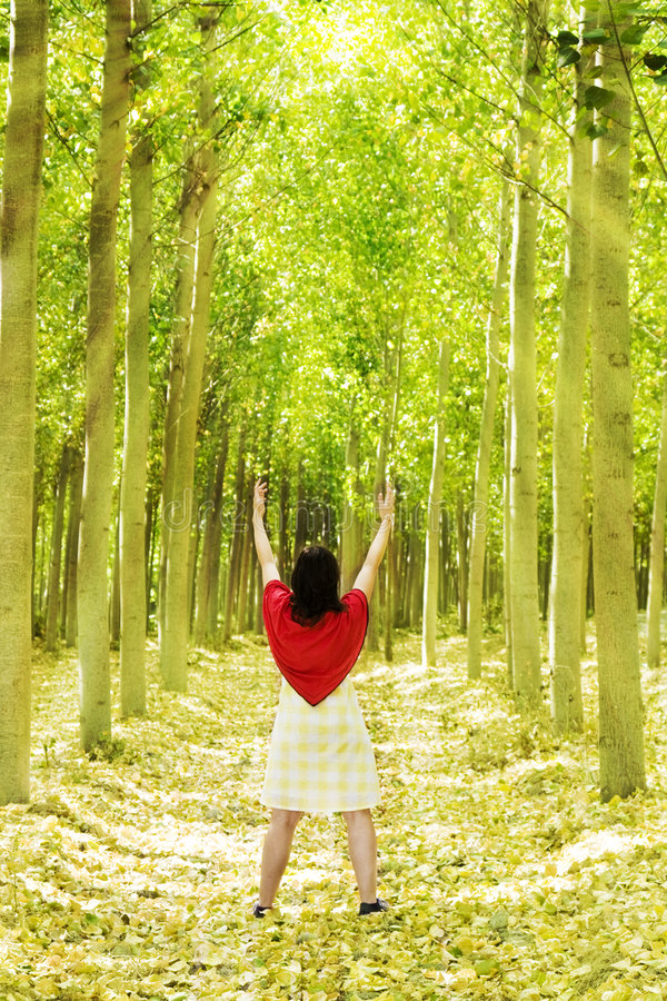 Download Prayer In The Forest Royalty Free Stock Photo - Image: 6430665