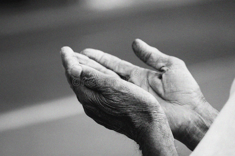 Prayer Hands stock photo