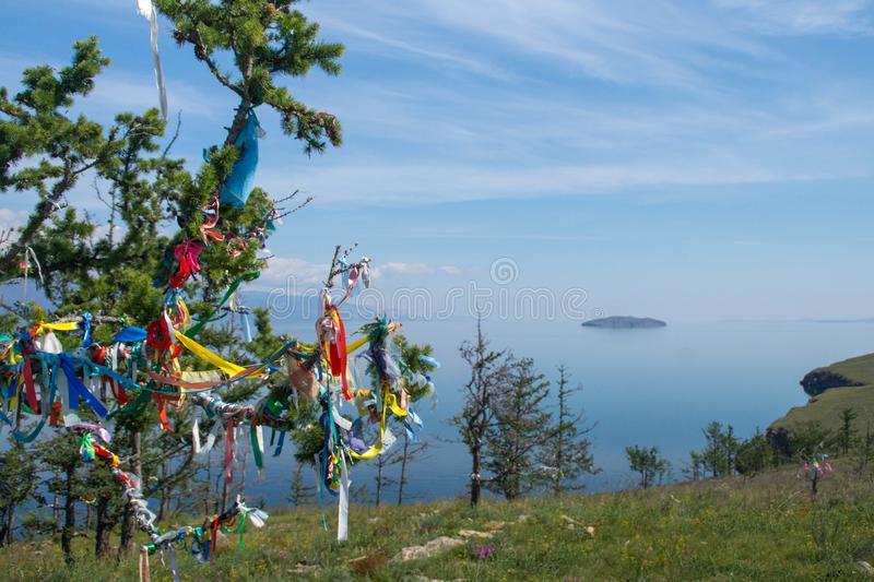 Prayer ribbons on a larch tree on Ogoy island stock photography